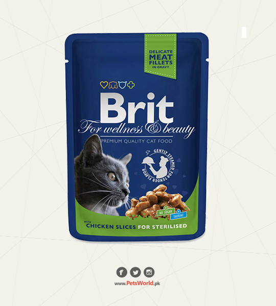 Brit Dog Food Review