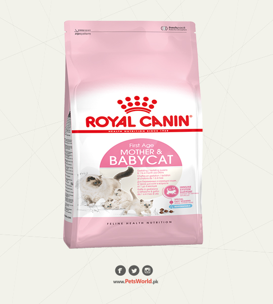 Royal Canin Mother & Baby Cat Dry Food